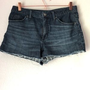 Universal Threads High Rise Shorties Denim Shorts